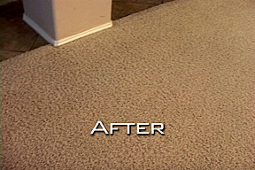 San Diego Carpet After